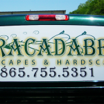 Abracadabra back window perferation_Knoxville, TN